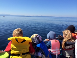 Whale Watching with Orca Spirit Adventures
